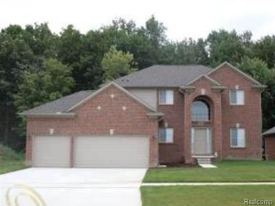 Shelby Twp Single Family Home For Sale: 4138 Hawks Nest Rd