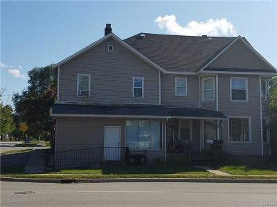 Port Huron Single Family Home For Sale: Lapeer Ave
