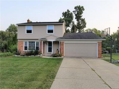Troy Single Family Home For Sale: 145 Miracle