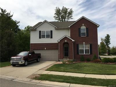 Farmington Hills Single Family Home For Sale: 39031 Cattail Crt