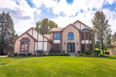 Rochester Hills Single Family Home For Sale: 37 Cross Creek Blvd
