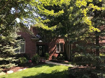 Shelby Twp Single Family Home For Sale: 55256 Macintosh Crt