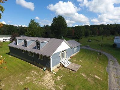 Lapeer Single Family Home For Sale: 146 N Elm Grove Rd