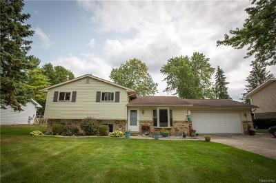 Lake Orion Single Family Home For Sale: 3811 Rohr Rd