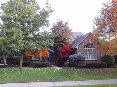 Shelby Twp Single Family Home For Sale: 47506 Brockmor Dr