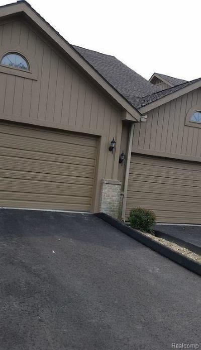 Farmington Hills Single Family Home For Sale: 29548 Sierra Point Cir