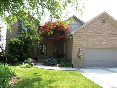 Macomb Single Family Home For Sale: 46006 Copper Lock Ln