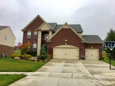 Lake Orion Single Family Home For Sale: 4958 Catalina Dr