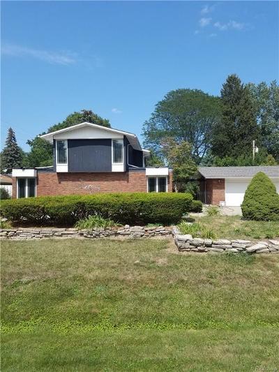 Southfield Single Family Home For Sale: 24558 N Carolina St