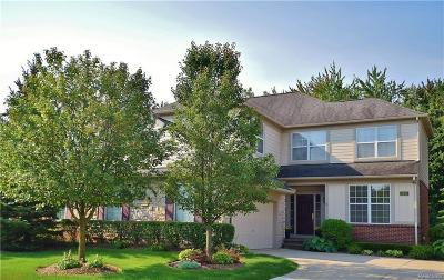 Rochester Hills Condo/Townhouse For Sale: 2453 Winding Brook Crt