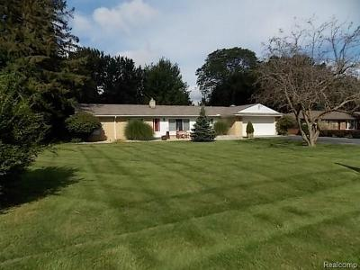 Rochester Hills Single Family Home For Sale: 346 Wimpole Dr