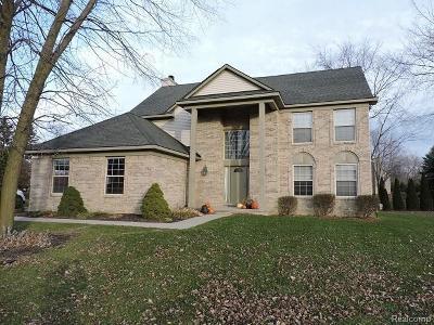 Lake Orion Single Family Home For Sale: 3999 Bald Mountain Rd