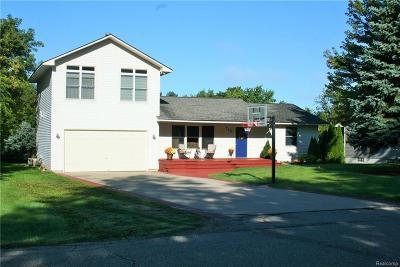 Lake Orion Single Family Home For Sale: 768 Hemingway Rd