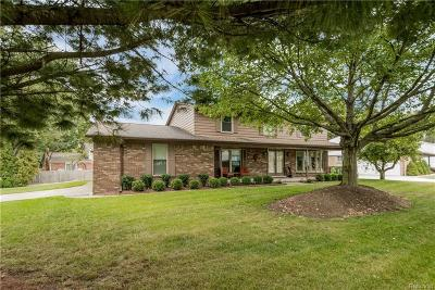 Shelby Twp Single Family Home For Sale: 55852 Sandy Ln