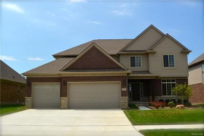 Macomb Single Family Home For Sale: 49597 Bingham Ln