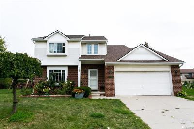 Canton Single Family Home For Sale: 40848 Worthington Rd