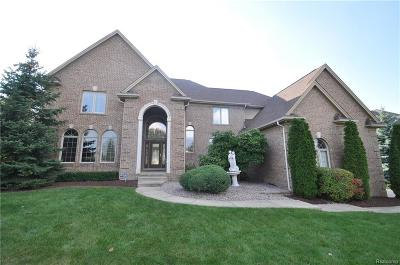 Shelby Twp Single Family Home For Sale: 55047 Meadow Ridge Crt