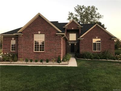 Romeo, Richmond Single Family Home For Sale: 11579 Erins Way