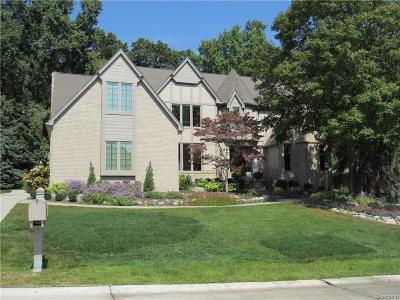 Rochester Hills Single Family Home For Sale: 2849 Eagle Dr