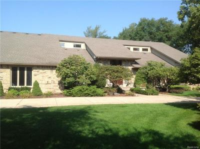 Rochester Hills Single Family Home For Sale: 1651 Washington Rd