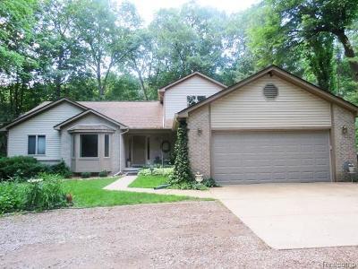 Rochester Hills Single Family Home For Sale: 3464 Hazelton Ave