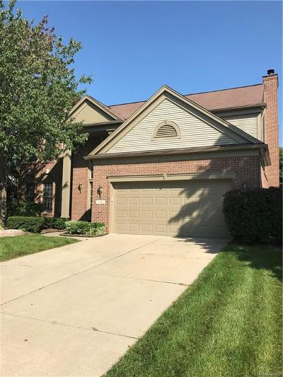Lake Orion Single Family Home For Sale: 3740 Mount Vernon Dr