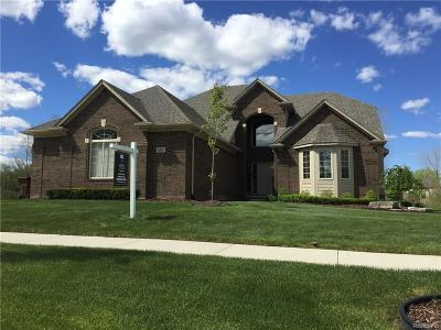 Shelby Twp Single Family Home For Sale: 7609 Hartwick Crt