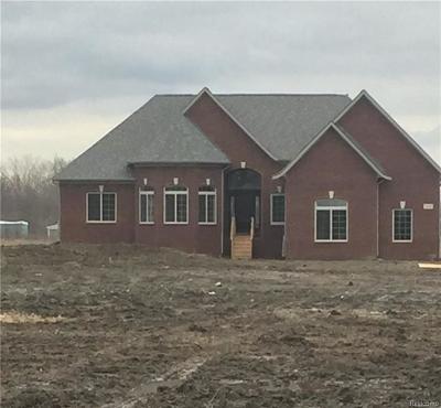 Single Family Home For Sale: 4931 Belle River