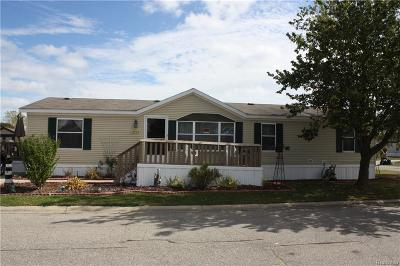 Fort Gratiot Single Family Home For Sale: 3832 Erie Dr