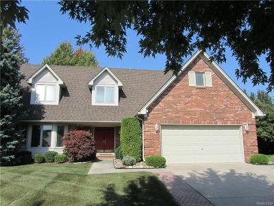 Clinton Township Single Family Home For Sale: 18987 Pierport Crt