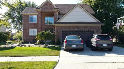 New Baltimore Single Family Home For Sale: 36536 Crimson Ln