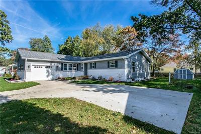 Port Huron Single Family Home For Sale: 2966 19th Ave