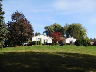 Macomb Single Family Home For Sale: 46790 North Ave