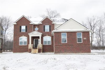 Chesterfield Single Family Home For Sale: 27282 Houghton Dr
