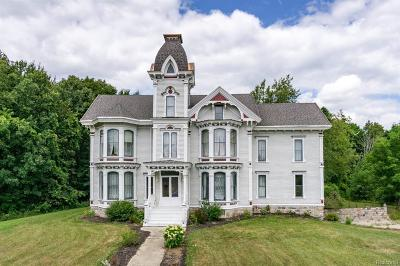 Lapeer Single Family Home For Sale: 450 Davis Lake Rd