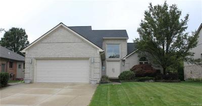 Macomb Single Family Home For Sale: 51793 Eva Dr