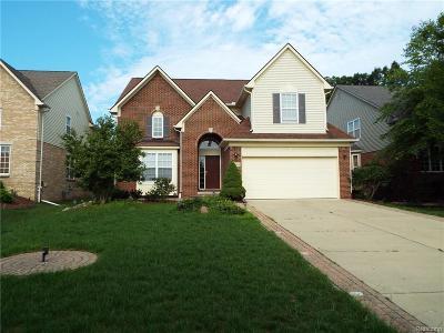 Northville Single Family Home For Sale: 16405 Ridgewood Crt