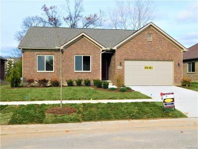 Clinton Township Single Family Home For Sale: 20997 Oakridge