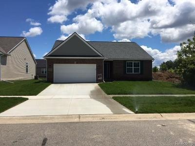 Clinton Township Single Family Home For Sale: 41073 Altissimo Dr