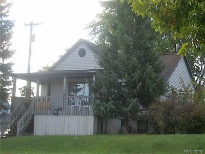 Port Huron Single Family Home For Sale: 2418 Oak St.