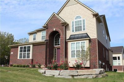 Lake Orion Single Family Home For Sale: 1114 Wales Dr