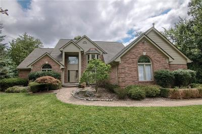 Franklin Single Family Home For Sale: 30500 Rushmore Cir