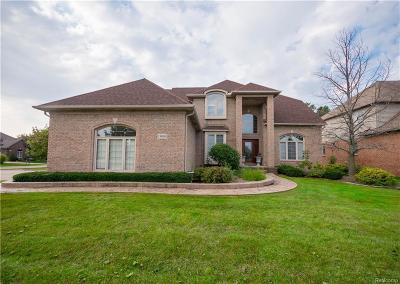 Shelby Twp Single Family Home For Sale: 13800 Greenville Dr