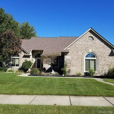 Macomb Single Family Home For Sale: 46472 Springwood Dr