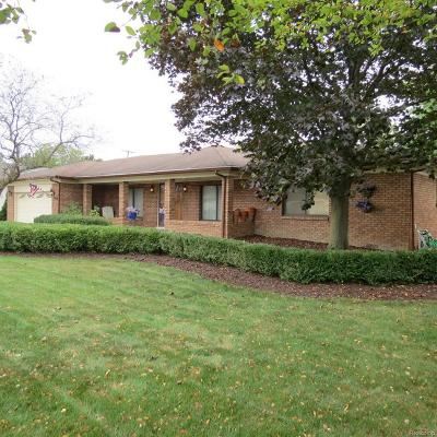 Clinton Township Single Family Home For Sale: 16614 Walcliff Dr