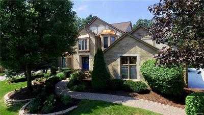 Troy Single Family Home For Sale: 4567 Odette Crt