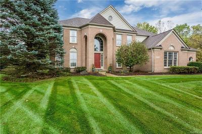 Rochester Single Family Home For Sale: 4965 Lexington Crt