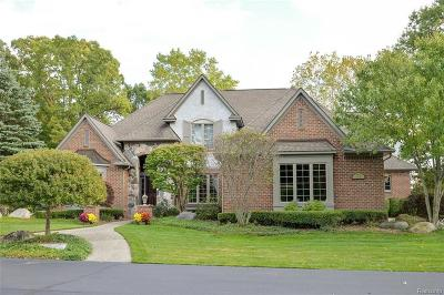 Lake Orion Single Family Home For Sale: 271 Greenan Ln