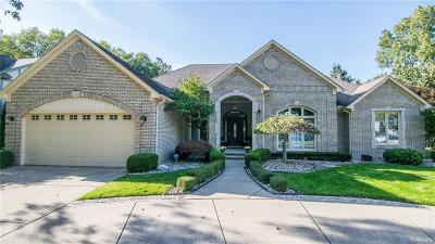 Clinton Township Single Family Home For Sale: 37207 Woodpointe Dr