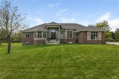 Northville Single Family Home For Sale: 55205 8 Mile
